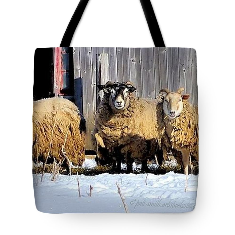 Wool Tote Bag featuring the photograph Wooly Sheep In Winter by Patti Smith