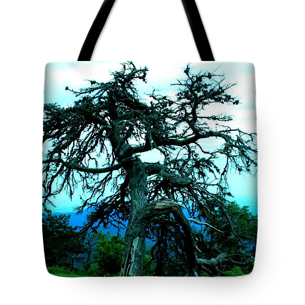 Dying Pine Tree Tote Bag featuring the photograph Work Of Art by Mary Koval