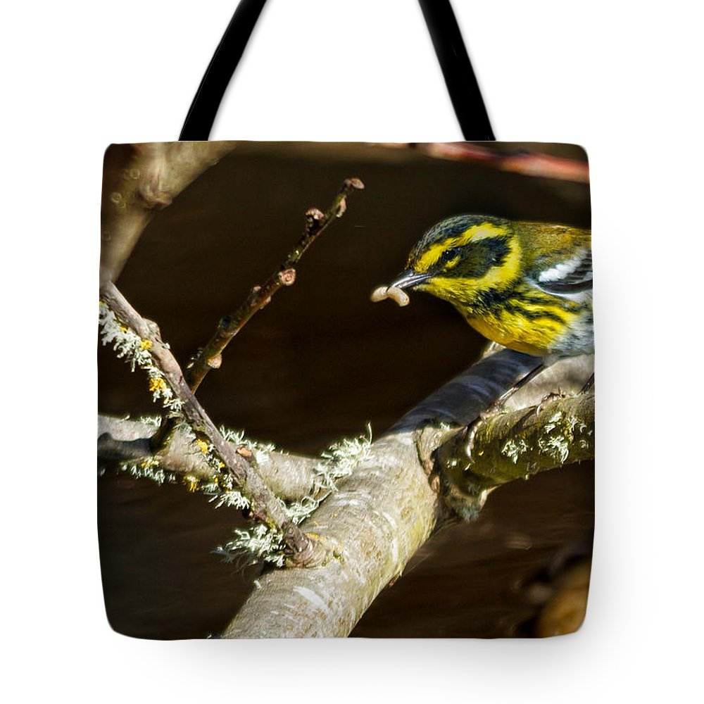 Townsend�s Warbler Tote Bag featuring the photograph Worm For Breakfast by Kathleen Bishop