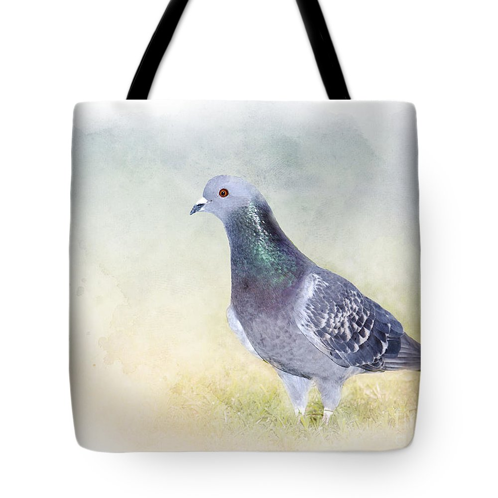 Rock Dove Tote Bag featuring the photograph Would You Love Me Too? by Betty LaRue