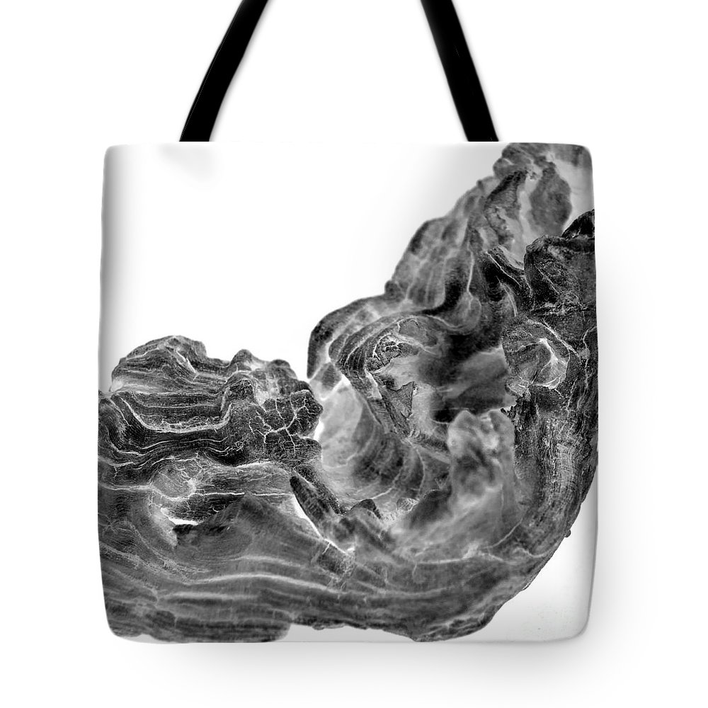 (c) Paul Davenport Tote Bag featuring the photograph wudu 2 VIII by Paul Davenport