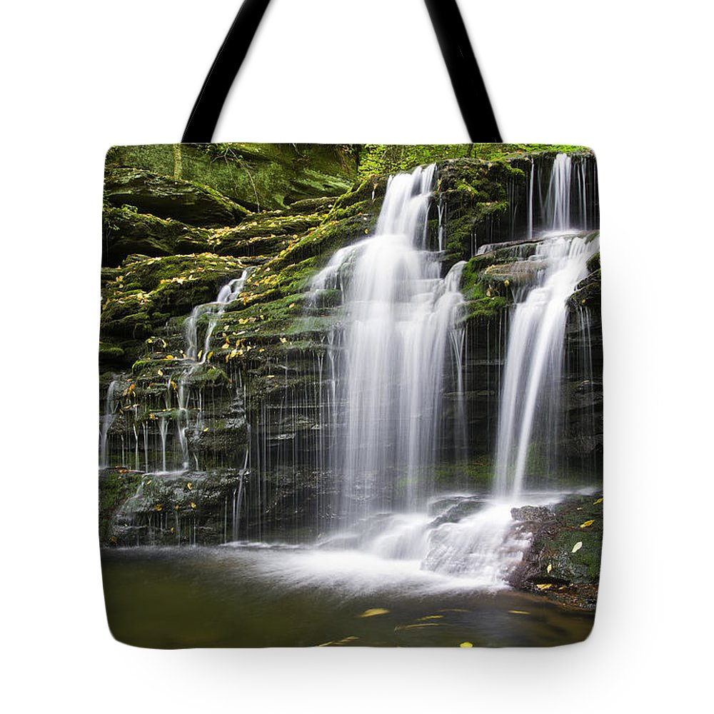 Ricketts Glen Tote Bag featuring the photograph Wyandot Falls 2 by Paul Riedinger