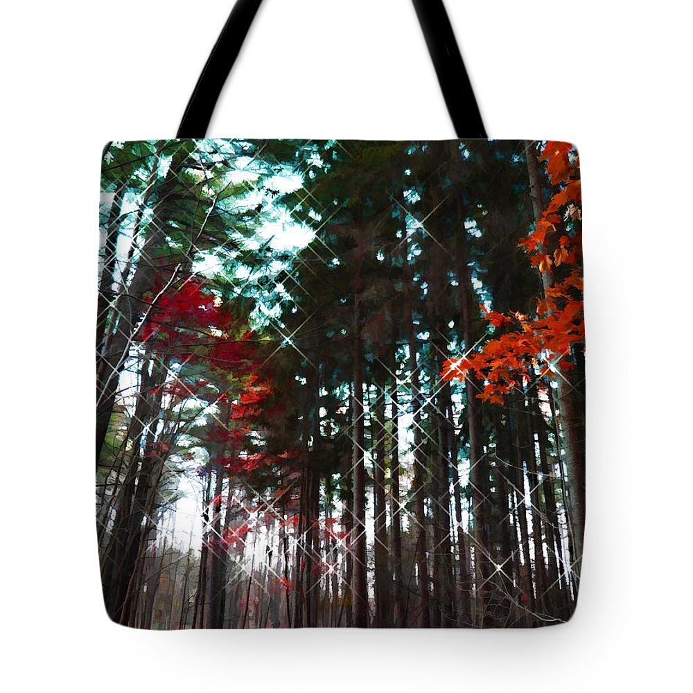 Trees Tote Bag featuring the photograph Yaddo Sparkle by Tina Baxter