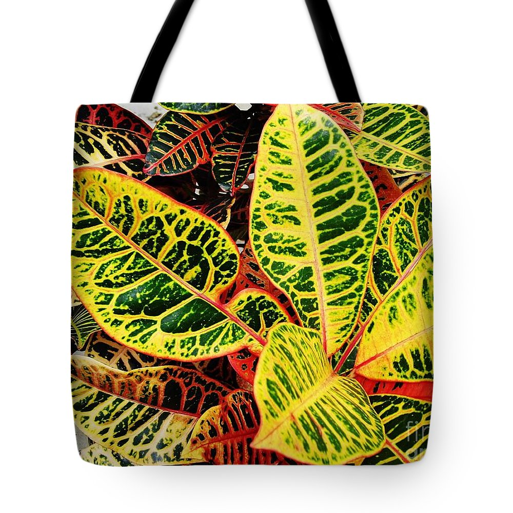 Croton Tote Bag featuring the photograph Yellow And Green Croton by D Hackett