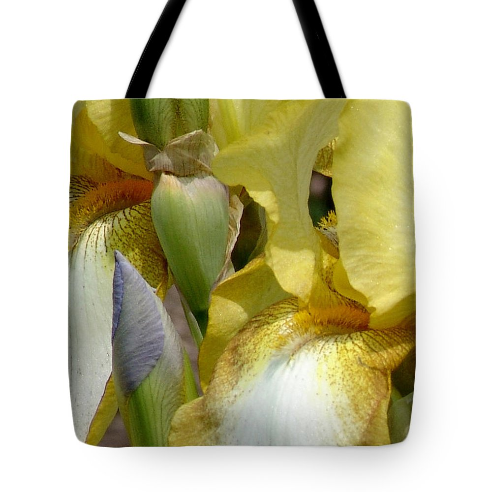 Yellow Tote Bag featuring the photograph Yellow And White Iris by David Hohmann