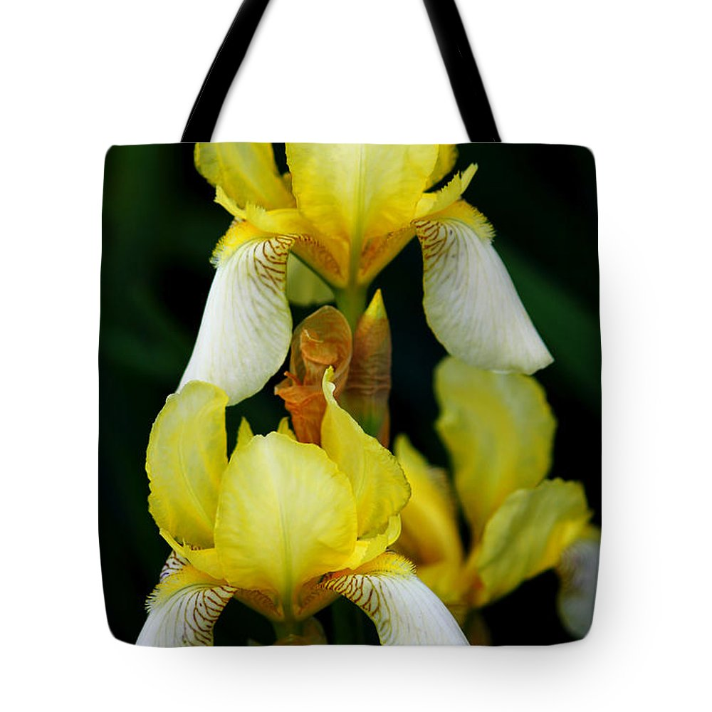 Iris Tote Bag featuring the photograph Yellow And White Irises by Jeanette C Landstrom