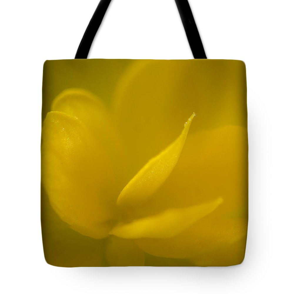 Florida Tote Bag featuring the photograph Yellow Begonia by Jane Luxton