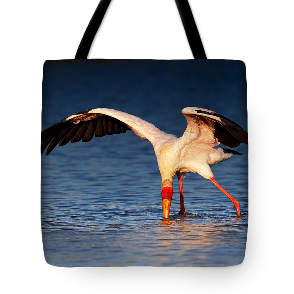 Ibis Photographs Tote Bags