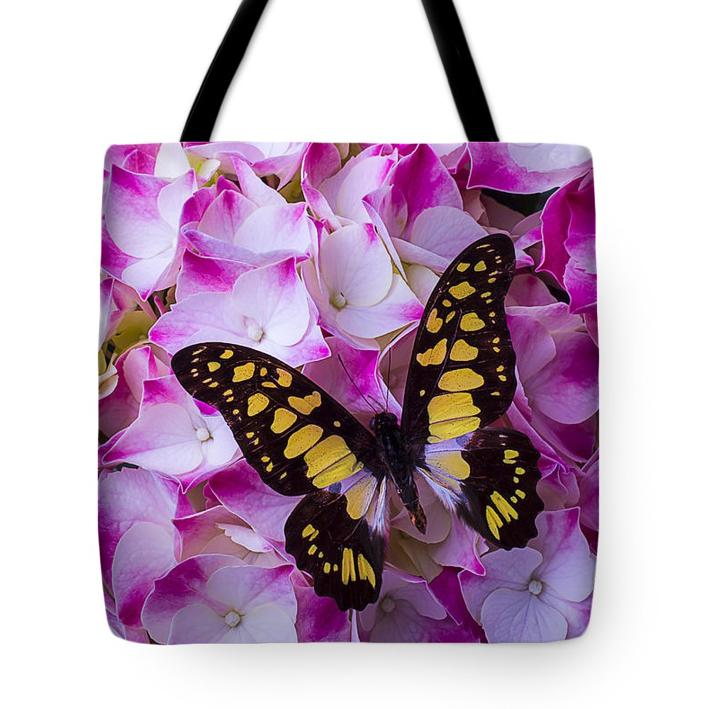 Yellow Black Tote Bag featuring the photograph Yellow Black Butterfly On Hydrangea by Garry Gay