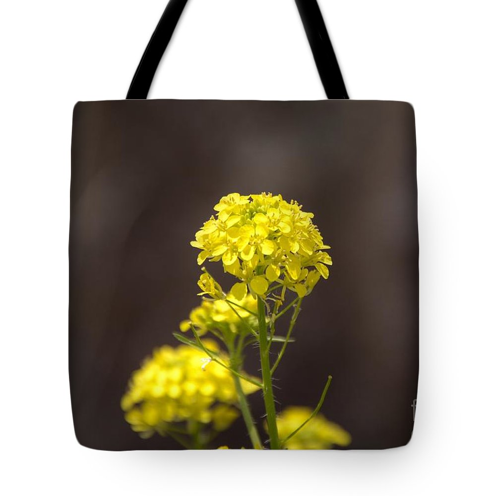 Yellow Tote Bag featuring the photograph Yellow Button by M Dale