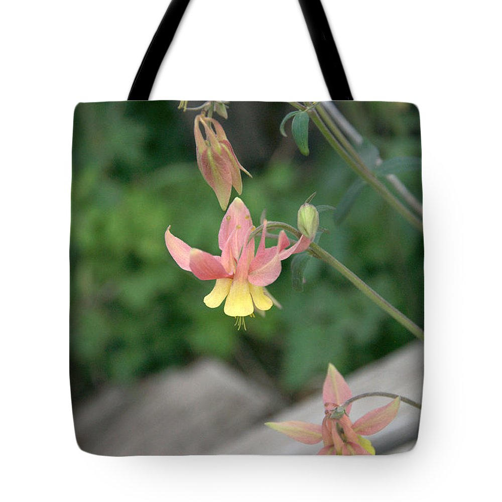 Yellow Tote Bag featuring the photograph Yellow Columbine 2 by Frank Madia