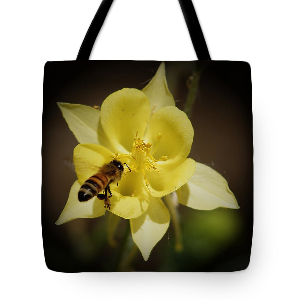 Yellow Columbine Tote Bag featuring the photograph Yellow Columbine by Ernie Echols