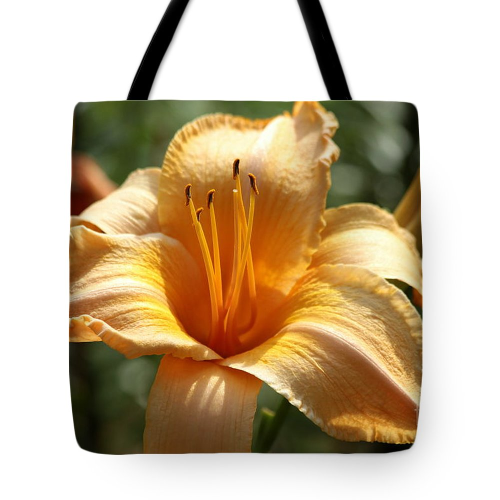 Day Tote Bag featuring the photograph Yellow Day Lily by Kenny Glotfelty