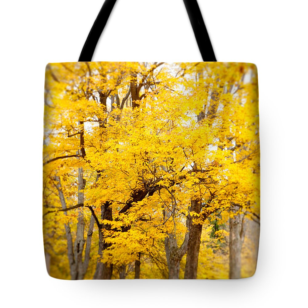 Fall Tote Bag featuring the photograph Yellow Fall by Erin Johnson