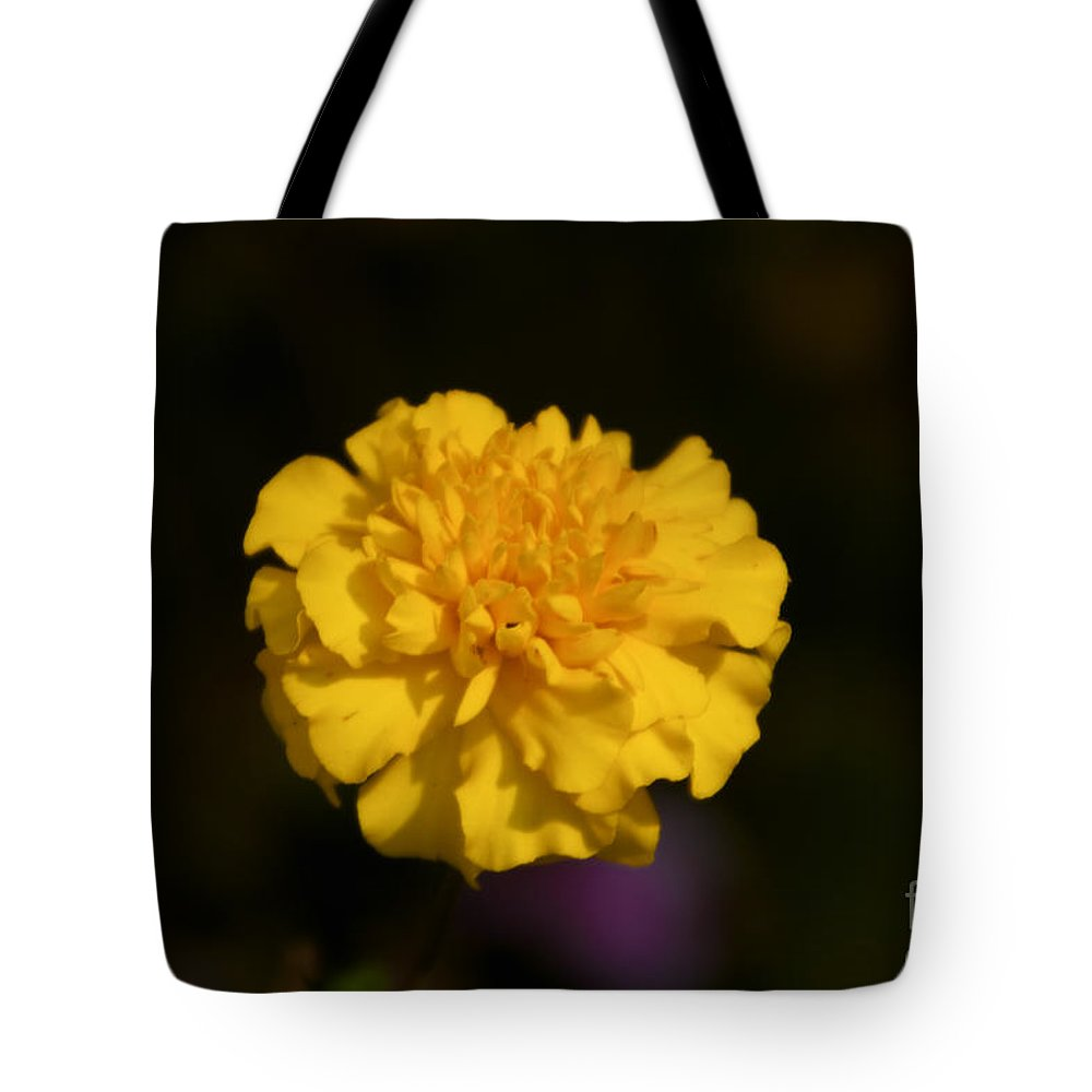 Yellow Tote Bag featuring the photograph Yellow Fall Flower by William Norton