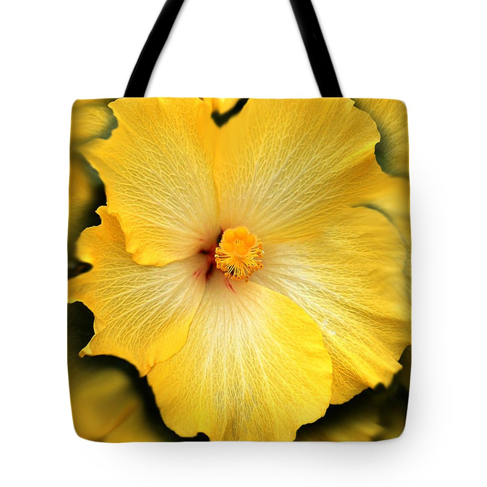 Hibiscus Tote Bag featuring the photograph Yellow Fantasy Hibiscus Flowers by Jennie Marie Schell