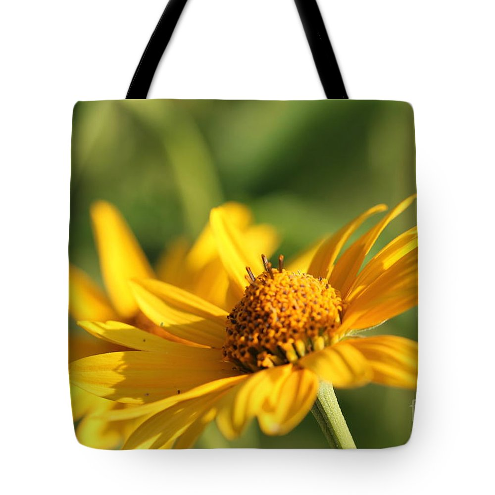 Blossom Tote Bag featuring the photograph Yellow Flower by Amanda Mohler