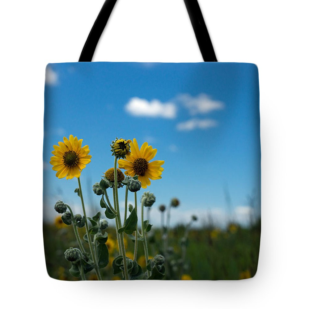 Yellow Tote Bag featuring the photograph Yellow Flower On Blue Sky by Photographic Arts And Design Studio
