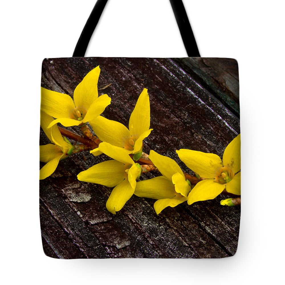 Yellow Tote Bag featuring the photograph Yellow Forsythia by Scott Hervieux