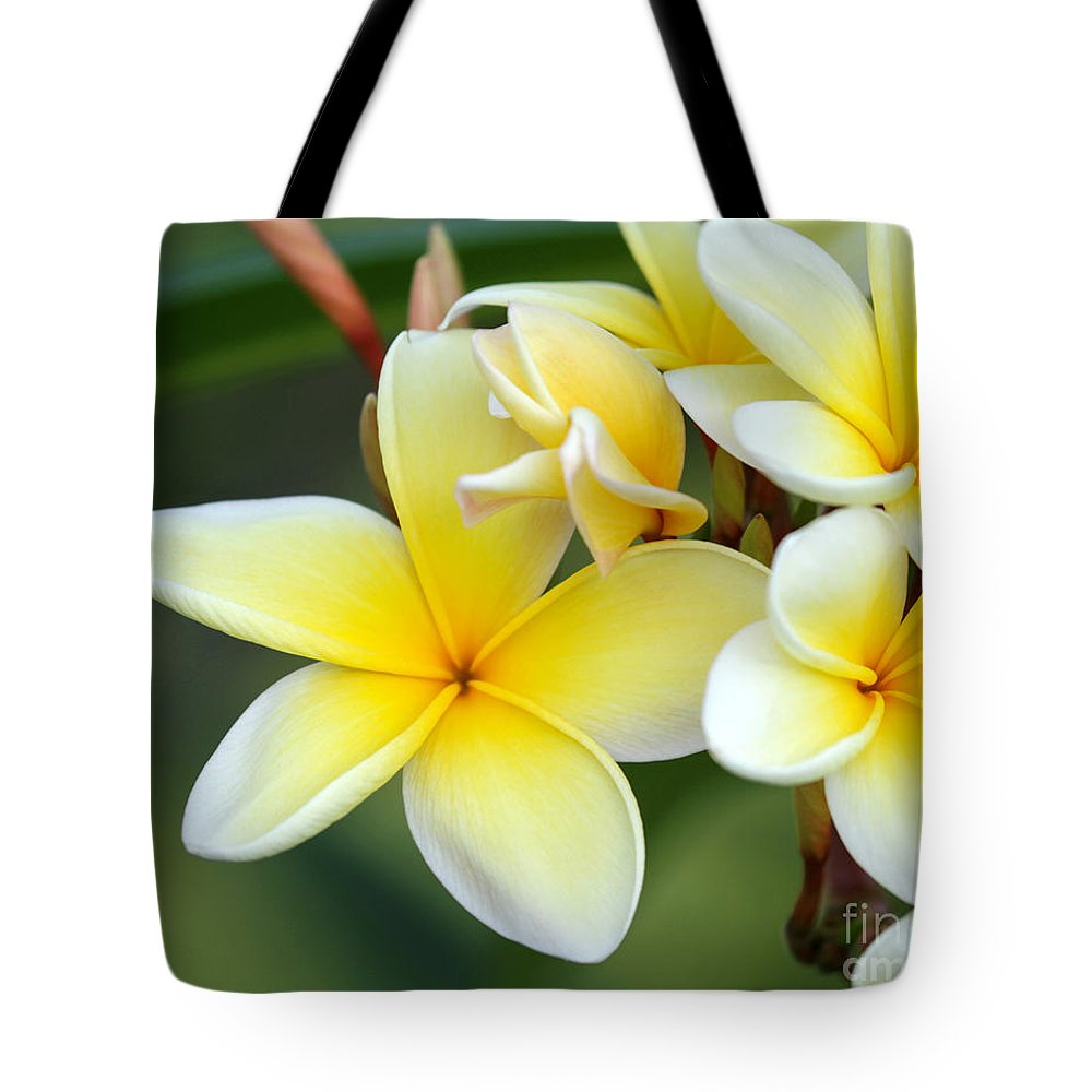 Macro Tote Bag featuring the photograph Yellow Frangipani Flowers by Sabrina L Ryan
