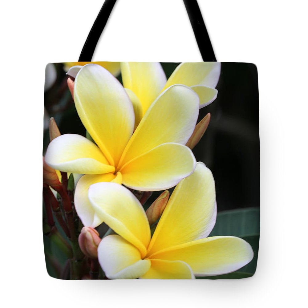 Yellow Hawaiian Plumeria Flowers Tote Bag For Sale By Sabrina L Ryan