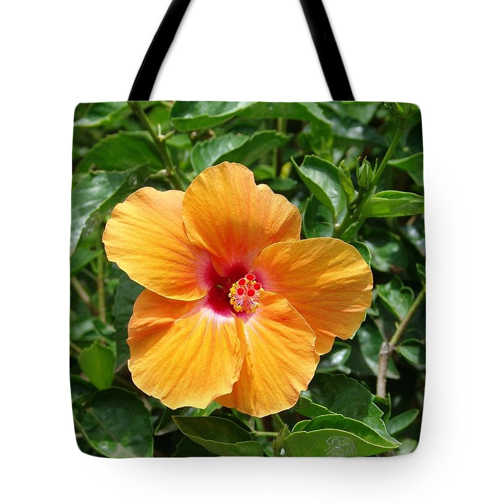 Yellow Hibiscus Tote Bag featuring the photograph Yellow Hibiscus by Eric Swan
