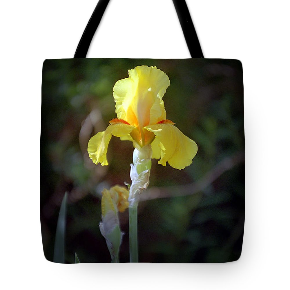 Iris Tote Bag featuring the photograph Yellow Iris by Kathy McClure