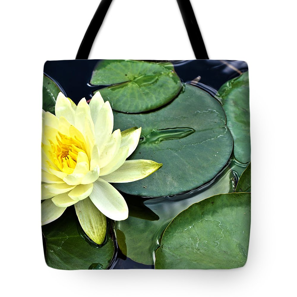 Yellow Lotus Botanical Art By Sharon Cummings Tote Bag For Sale By