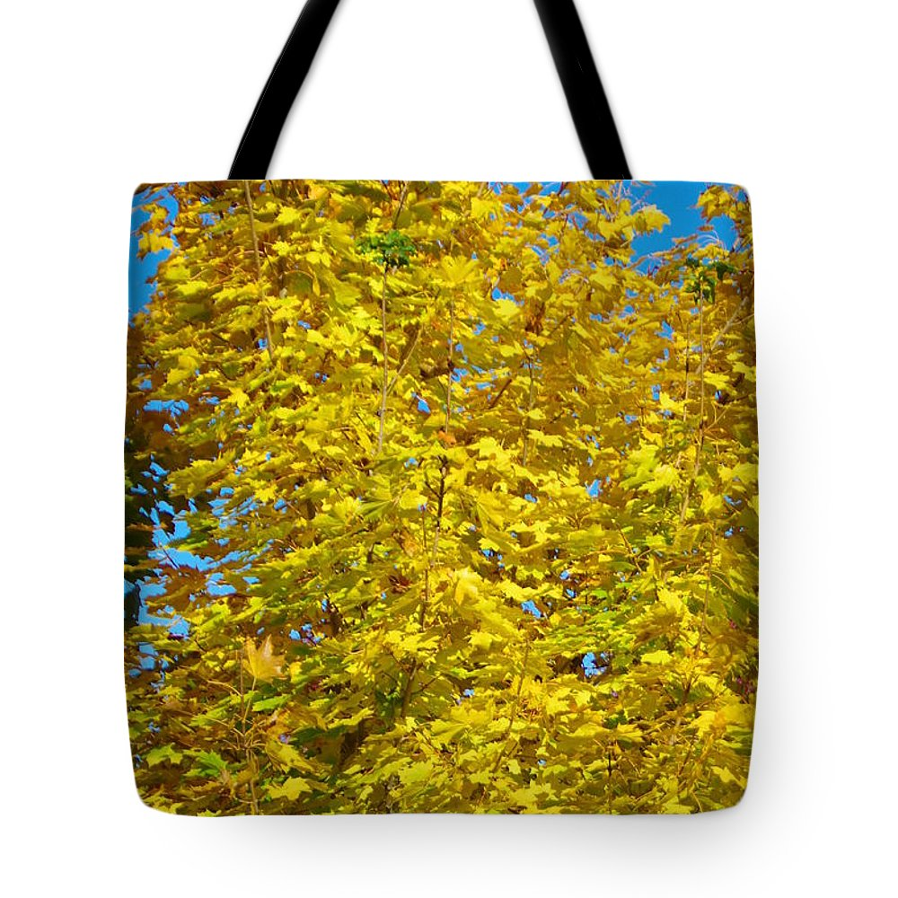 Fall Colors Tote Bag featuring the photograph Yellow Maple by Mike Wheeler