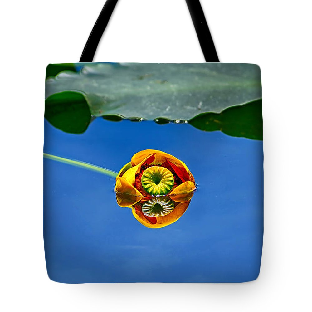 Lily Tote Bag featuring the photograph Yellow Pond Lily by Greg Norrell