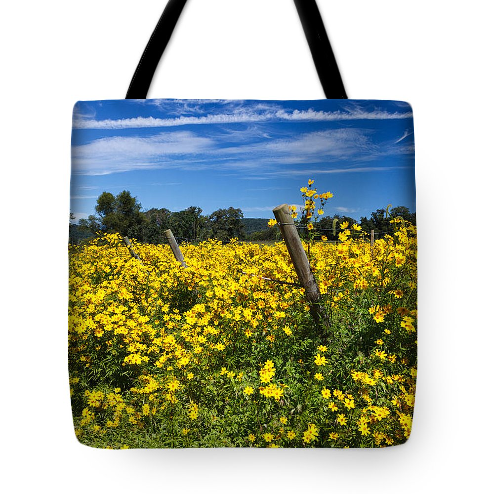 Wildflowers Tote Bag featuring the photograph Yellow Profusion by Carol VanDyke