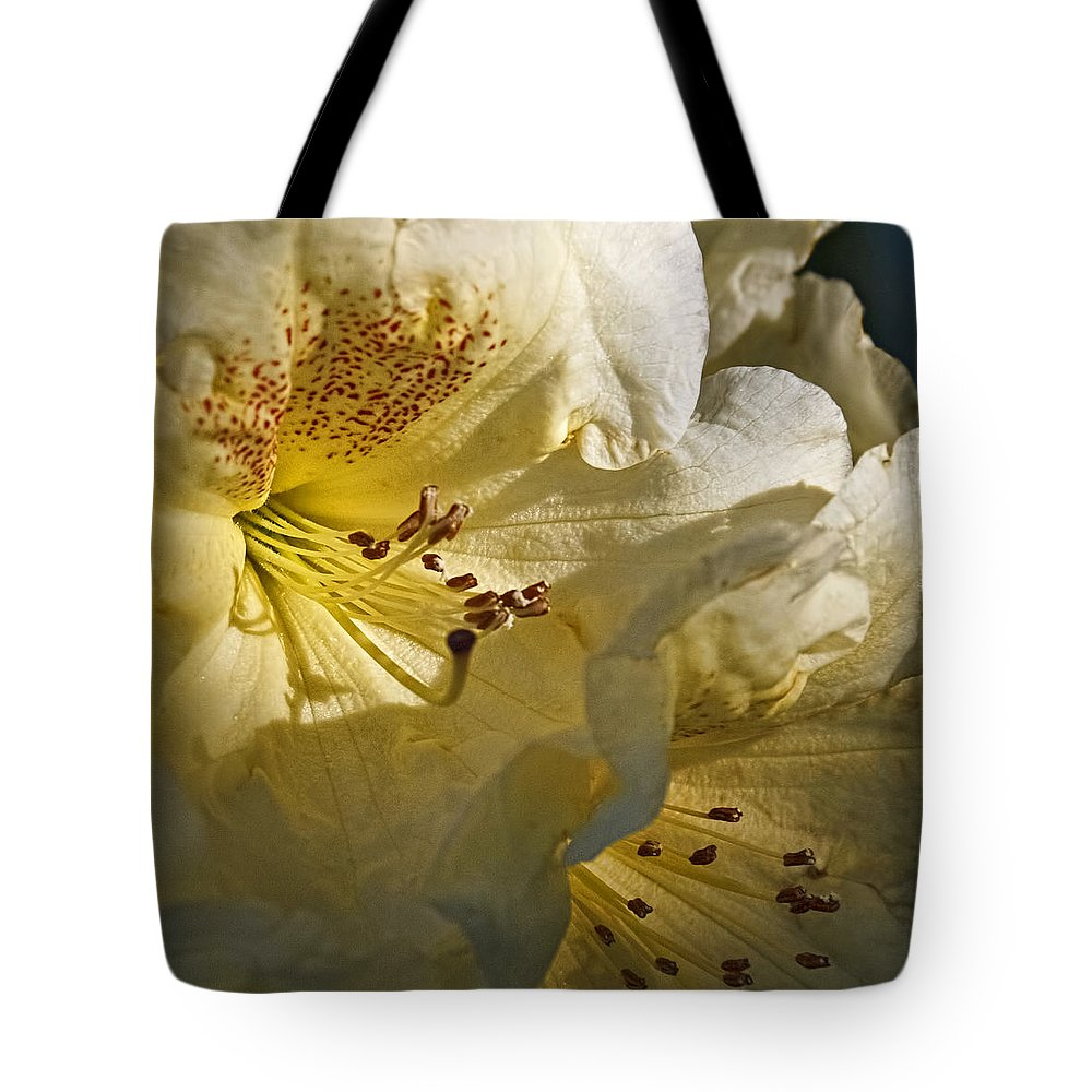 Yellow Rhododendron Tote Bag featuring the photograph Yellow Rhododendron by Wes and Dotty Weber