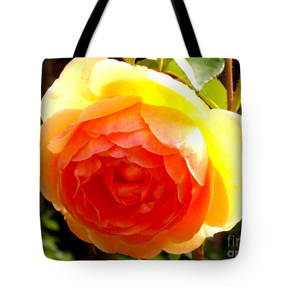 Rose Tote Bag featuring the photograph Yellow Rose by H Cooper