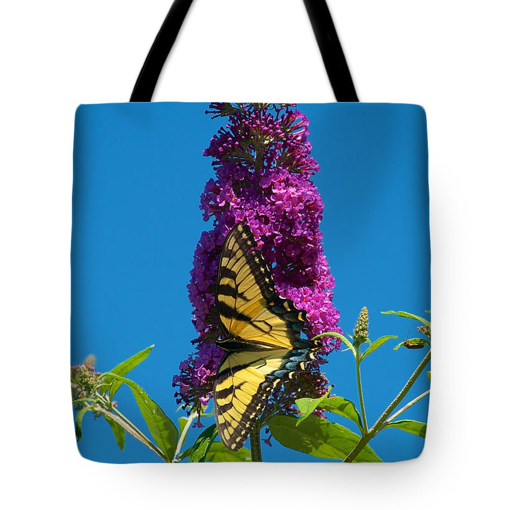 Butterfly Tote Bag featuring the photograph Yellow Tiger Swallowtail Papilio Glaucus Butterfly by Mark Dodd