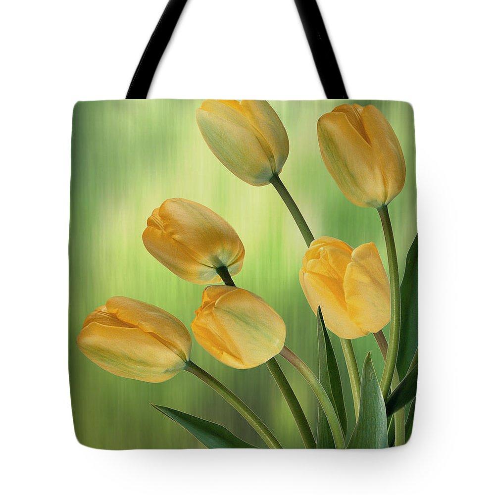 Yellow Tulips Tote Bag featuring the digital art Yellow Tulips by Nina Bradica