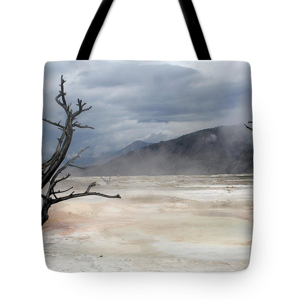 Minerals Tote Bag featuring the photograph Yellowstone 21 by Ingrid Smith-Johnsen