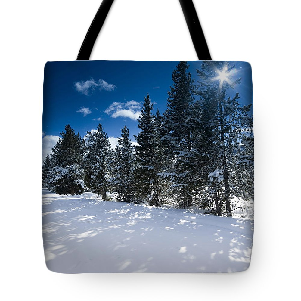 Winter Tote Bag featuring the photograph Yellowstone Sunshine by David Lichtneker