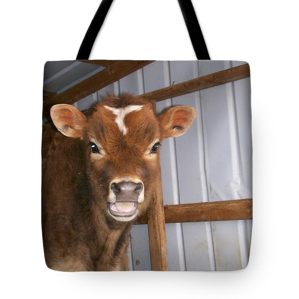 Cow Tote Bag featuring the photograph Yes I'm Talking To You by Sara Raber