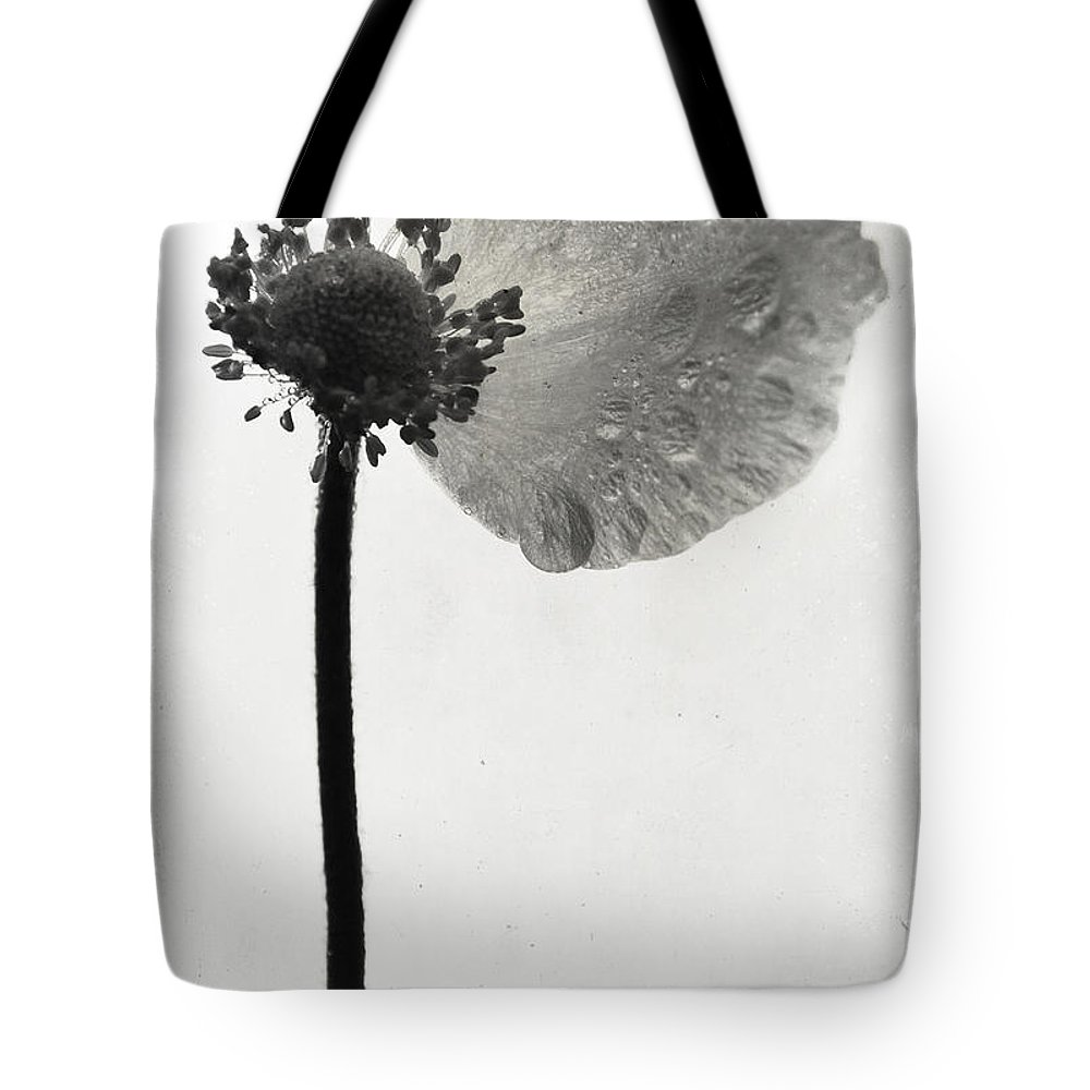 Flowers Tote Bag featuring the photograph Yesterdays Gone by The Artist Project
