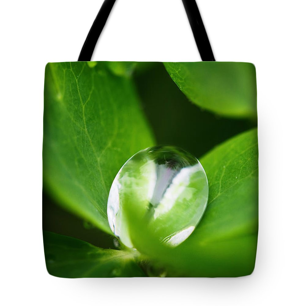 Water Drop Tote Bag featuring the photograph Yin Yang by Susan Capuano