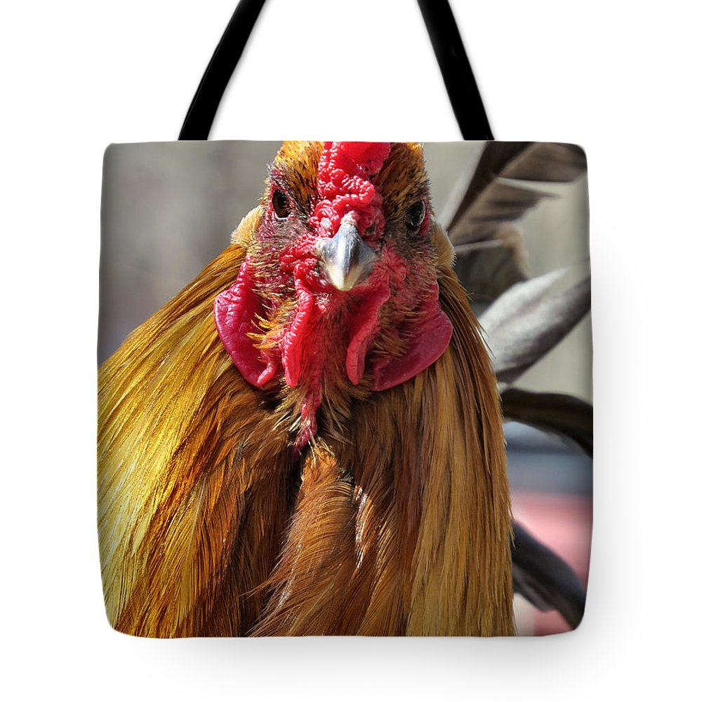 Chicken Tote Bag featuring the photograph Yo Human by Art Dingo