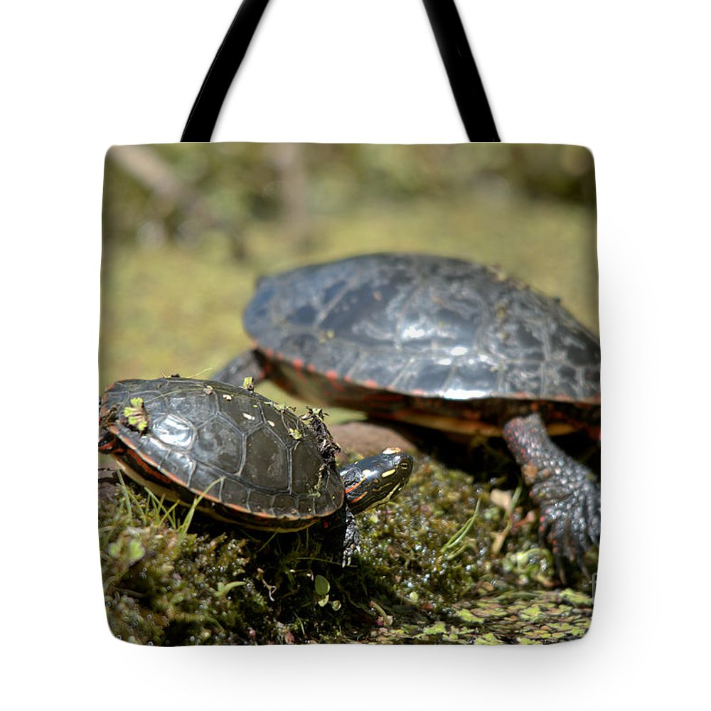 Painted Turtle Tote Bag featuring the photograph Yoga Turtles by Cheryl Baxter