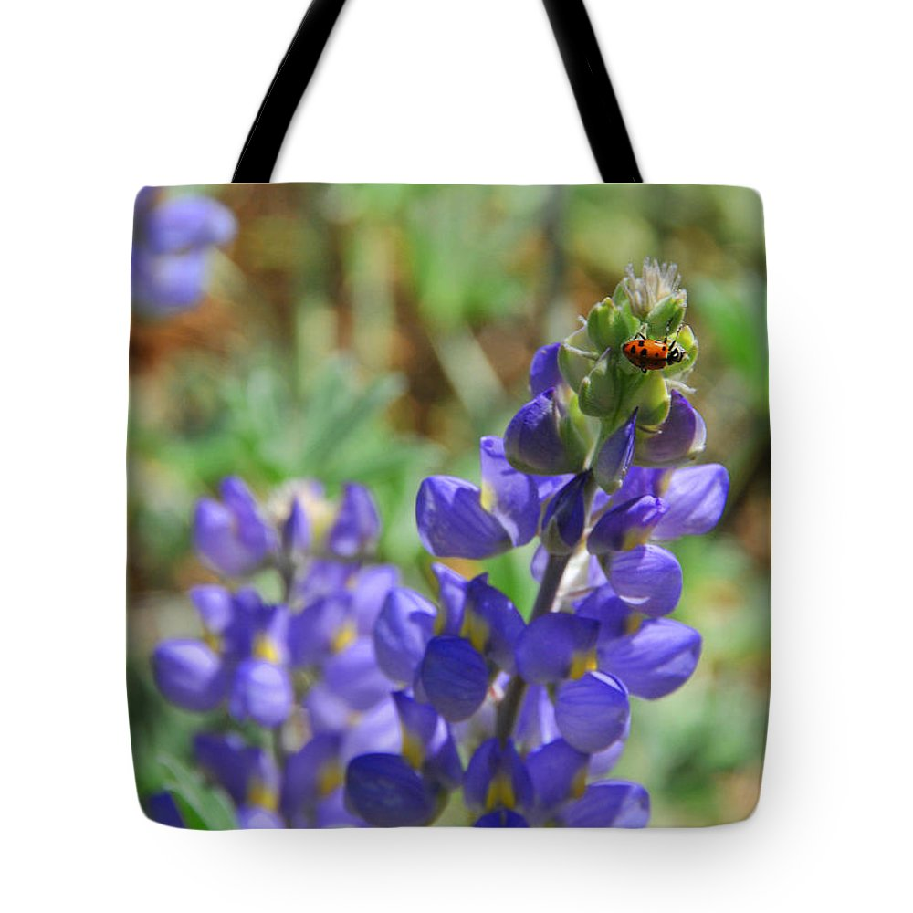 Lupines Tote Bag featuring the photograph Yosemite Lupine And Ladybug by Lynn Bauer