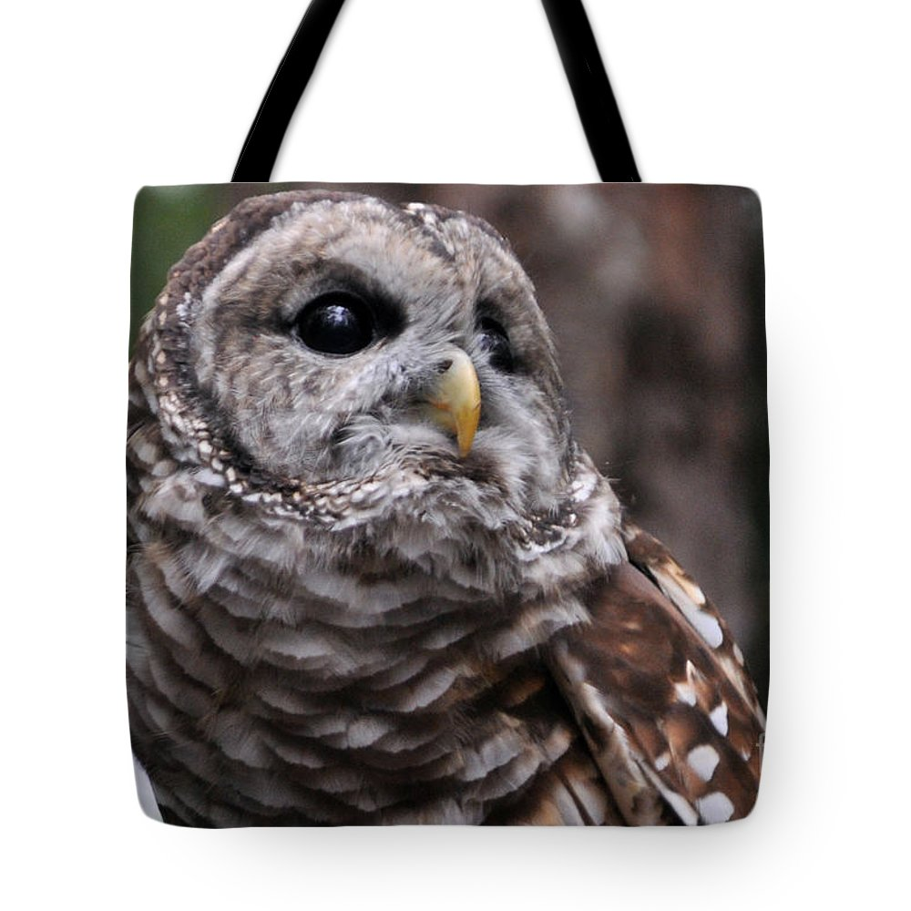 Owl Tote Bag featuring the photograph You Can Call Me Owl by Lydia Holly