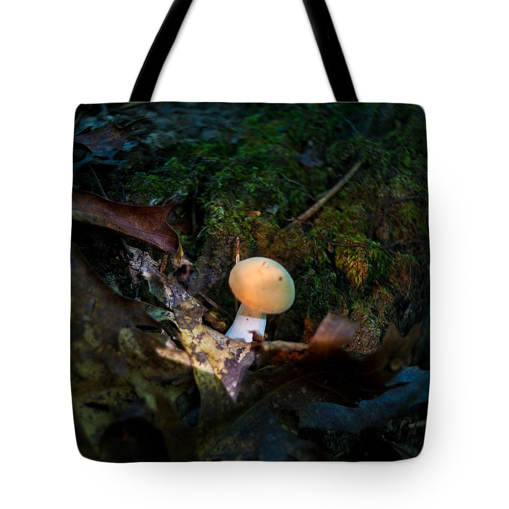 Cove Tote Bag featuring the photograph Young Lonely Mushroom 2 by Douglas Barnett