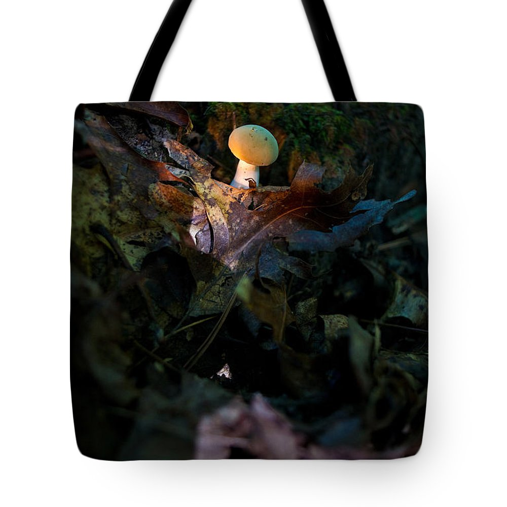 Cove Tote Bag featuring the photograph Young Lonely Mushroom by Douglas Barnett