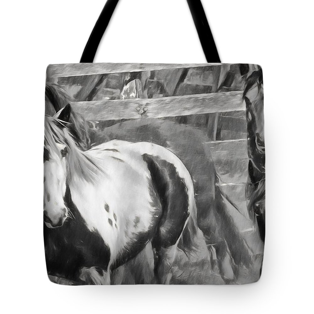 Horses Tote Bag featuring the photograph Young Stallions by Alice Gipson