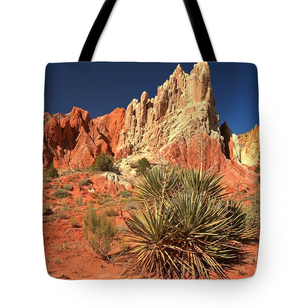Cottonwood Road Tote Bag featuring the photograph Yucca Badlands And Colors by Adam Jewell