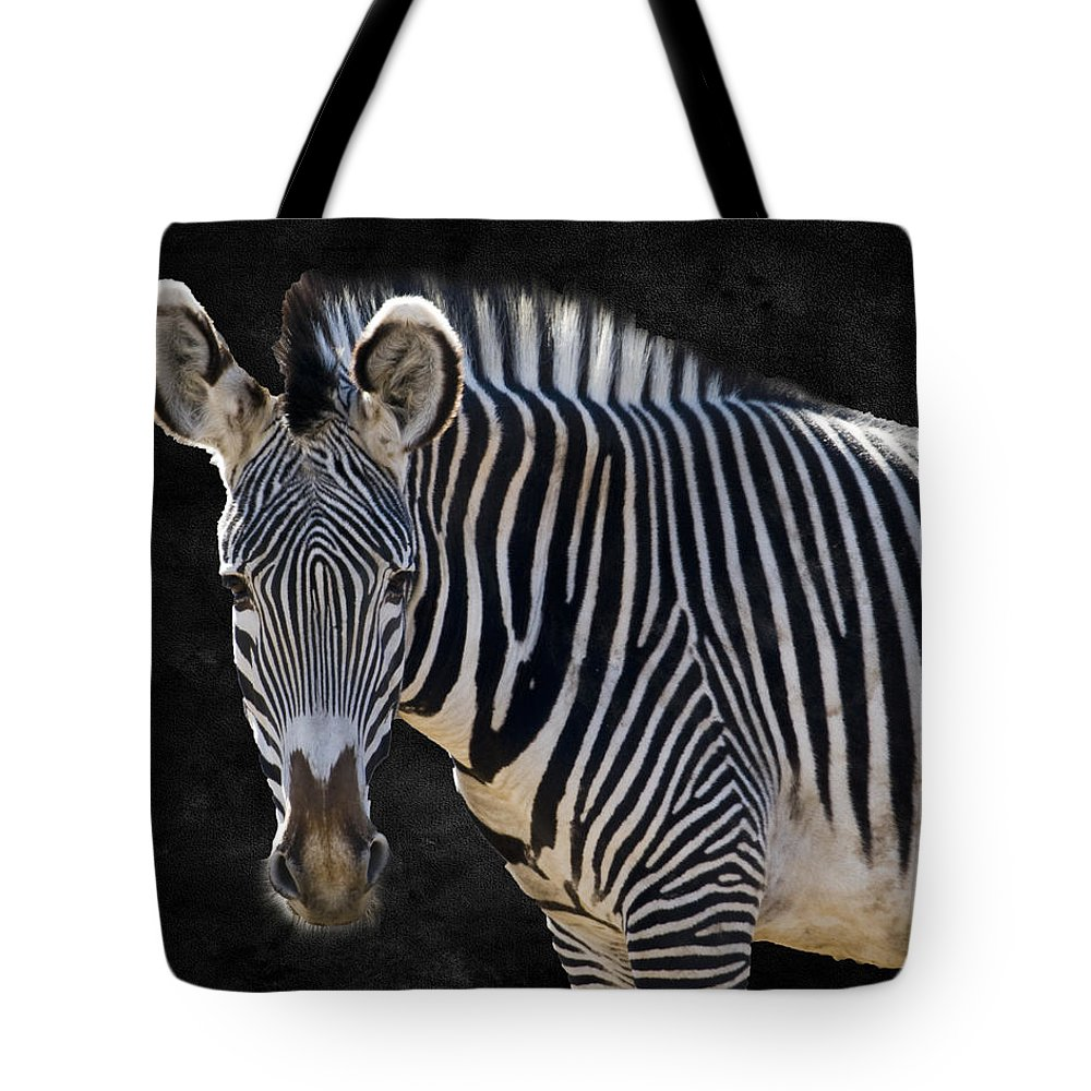 Animal Tote Bag featuring the photograph Z Is For Zebra by Juli Scalzi