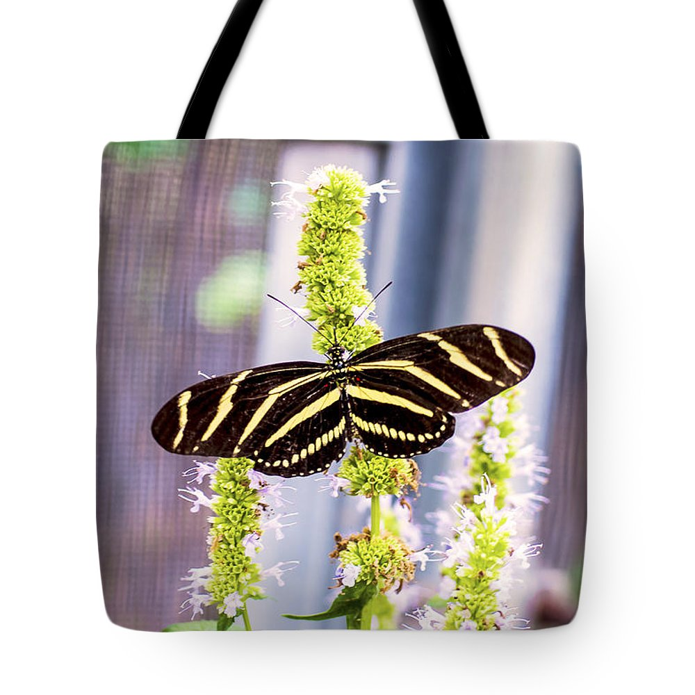 Nj Tote Bag featuring the photograph Zebra II by Pablo Rosales